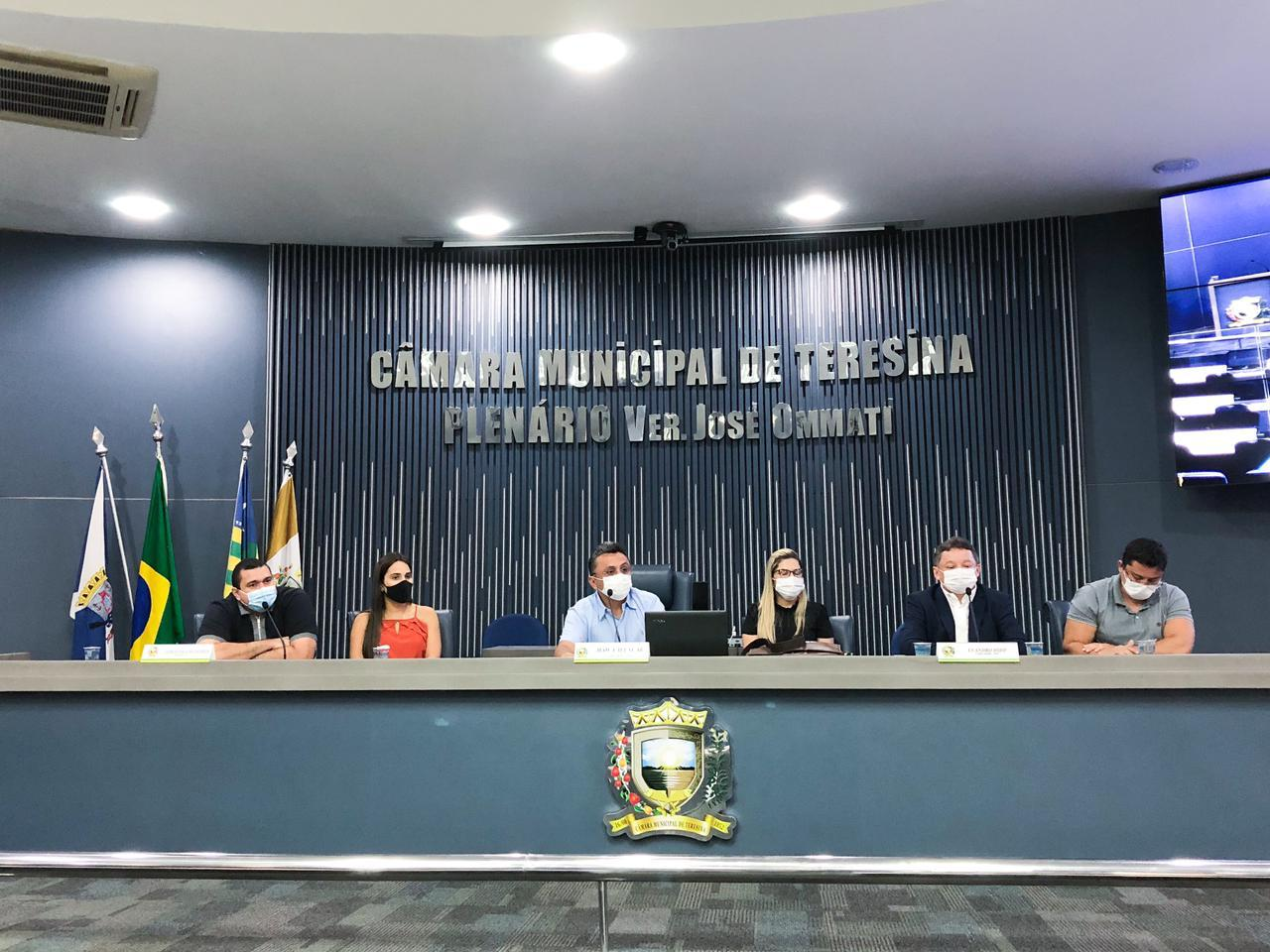 Audiência pública na Câmara Municipal de Teresina - Foto: Divulgação