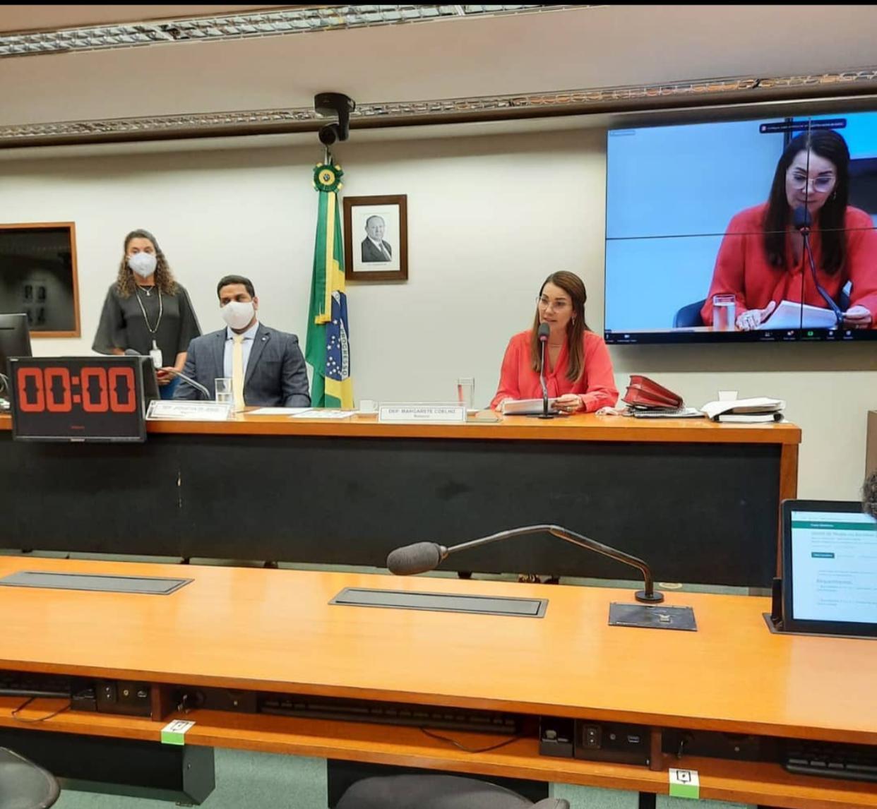 Margarete Coelho condena estímulo à invasão da Câmara dos Deputados - Imagem 1