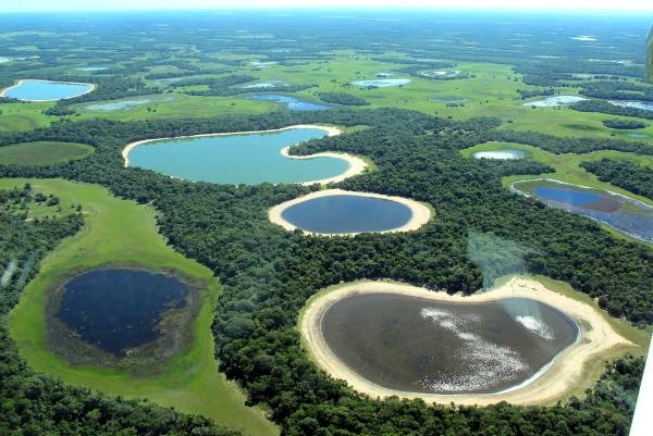 Pantanal, no Brasil (Divulgação)