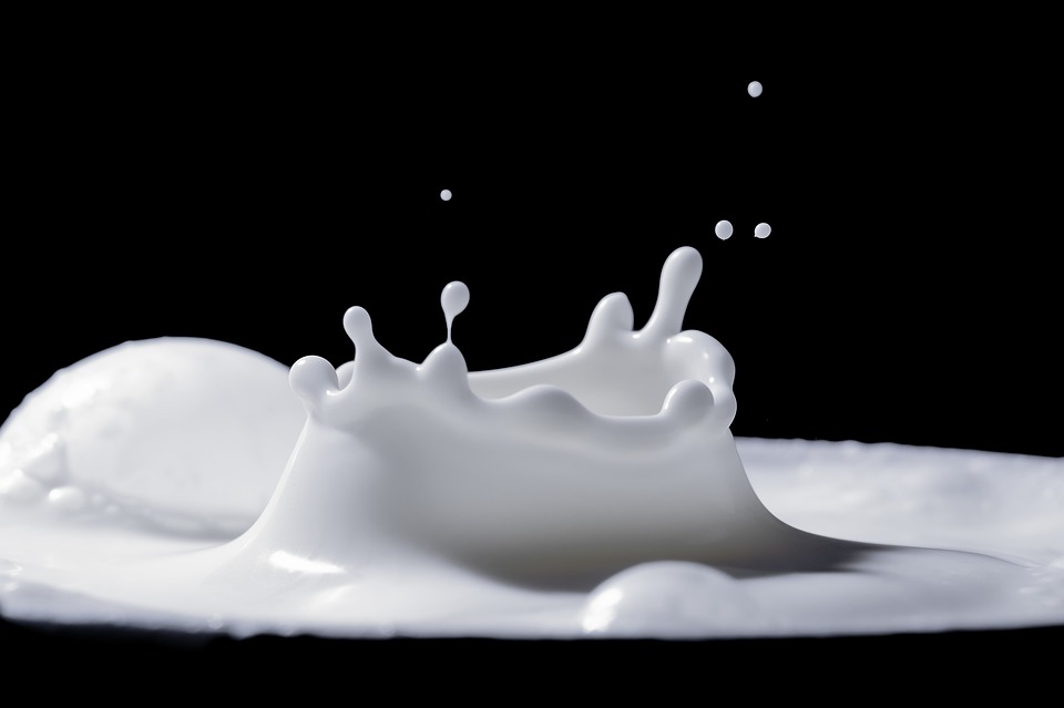 Pesquisadores da Faculdade de Zootecnia da USP apontam que a mudança na dieta dos animais melhora o perfil dos ácidos graxos do produto e aperfeiçoa a relação de ômega-6 e ômega-3, deixando o leite mais saudável- Foto: Reprodução Pixabay