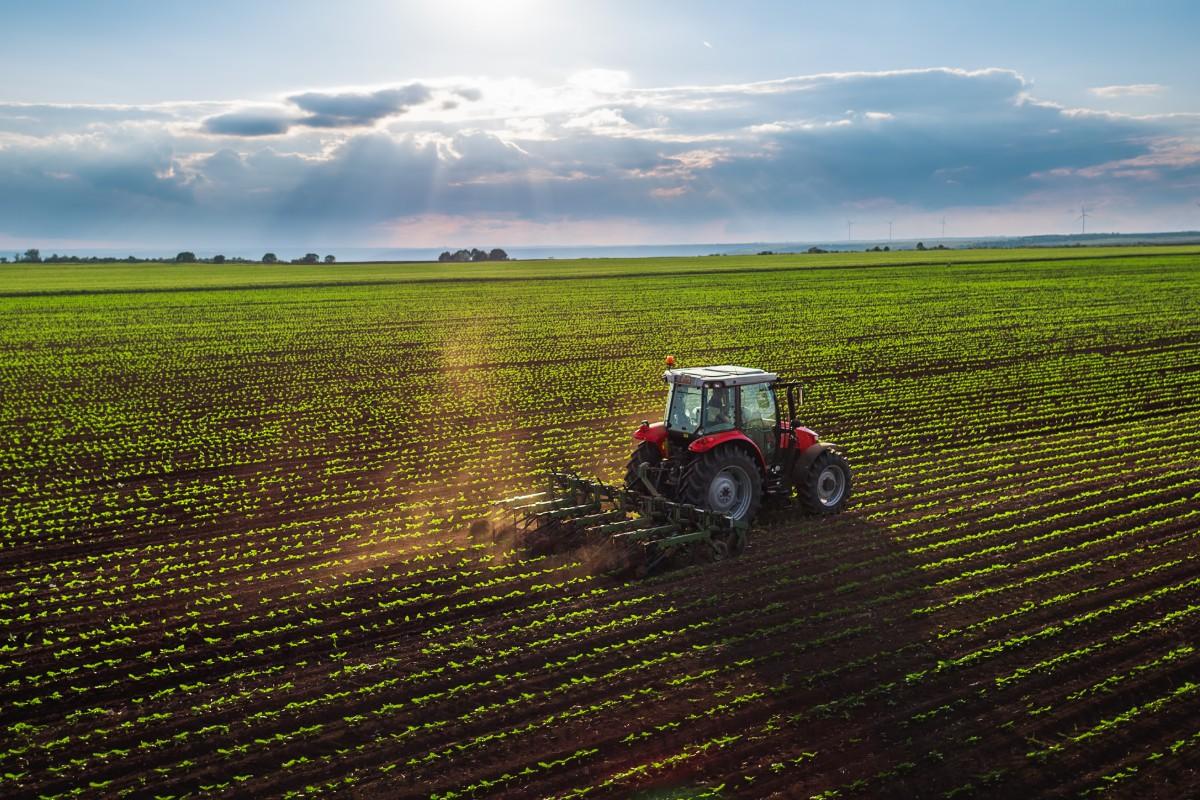 Fertilizantes terão tributação progressiva a partir de 2022, decide governo