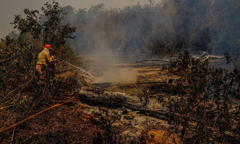 Estudo aponta que a estiagem severa registrada no bioma entre 2019 e 2020 é resultado de um fenômeno meteorológico natural similar ao que desencadeou a crise hídrica no Estado de São Paulo entre 2014 e 2016 (foto: Mayke Toscano/Secom-MT)