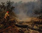 Pesquisadores identificam causas da seca extrema que afetou o Pantanal