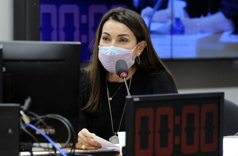 Margarete Coelho diz querer evitar retrocessos na legislação eleitoral - Imagem 1