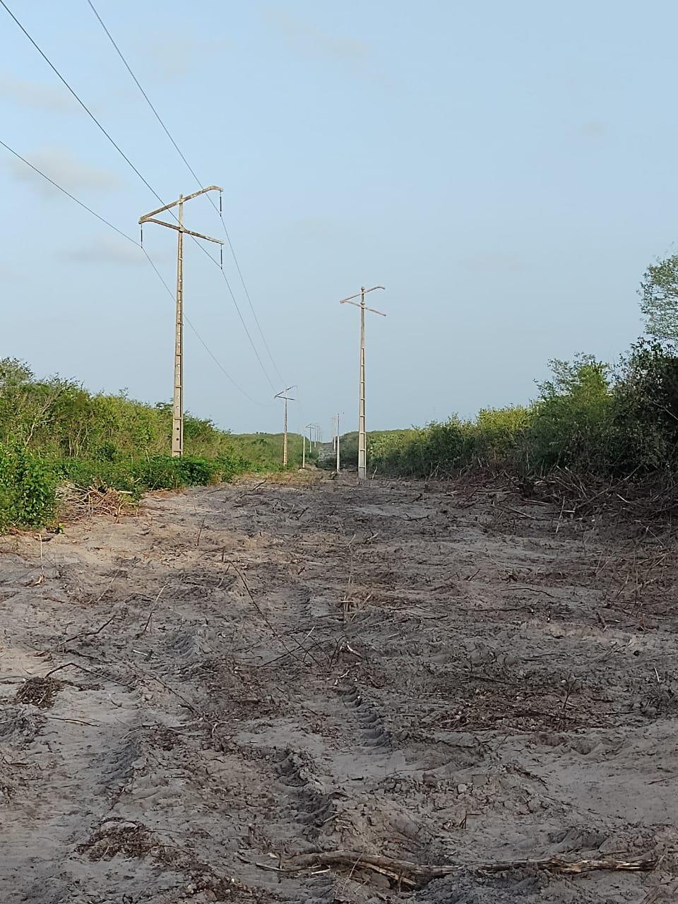 Equatorial vem realizando série de investimentos no Piauí - Foto: Divulgação
