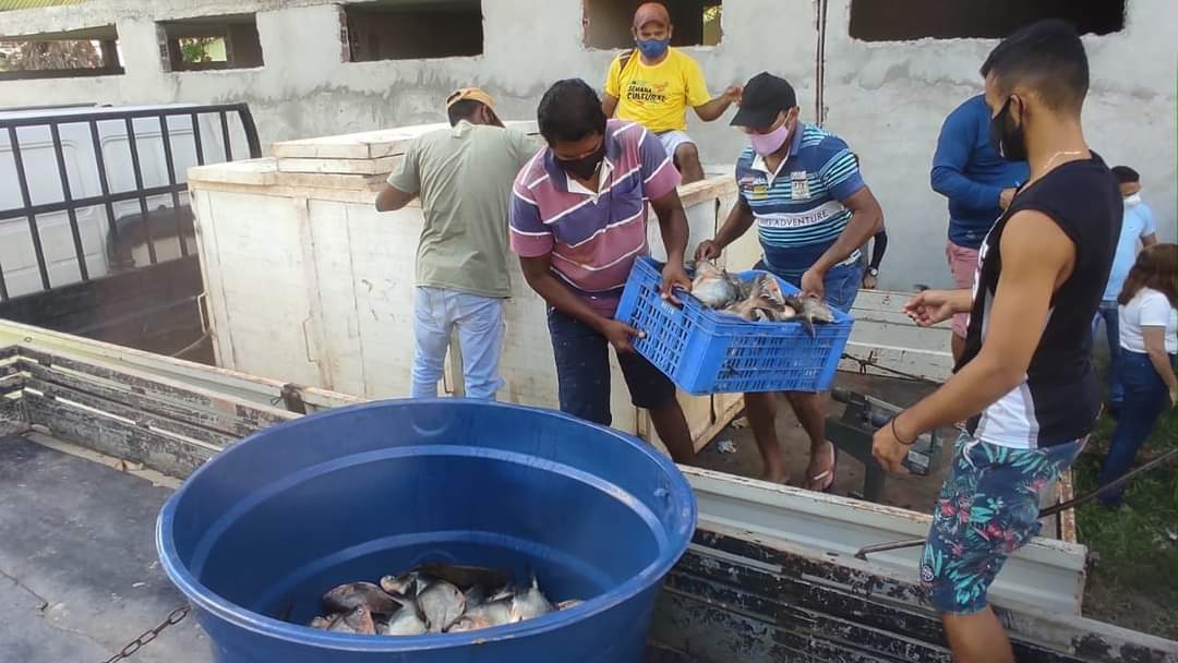 Prefeito João Luiz mantém tradição de distribuição do pescado em Monsenhor Gil - Imagem 3