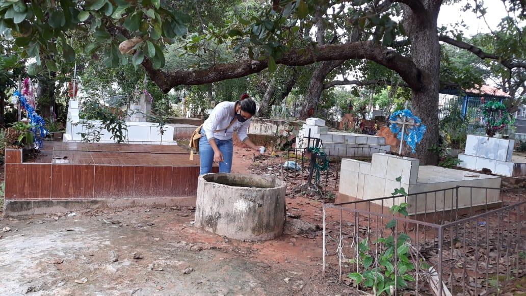 Agentes visitam residências para detectar focos do mosquito da dengue