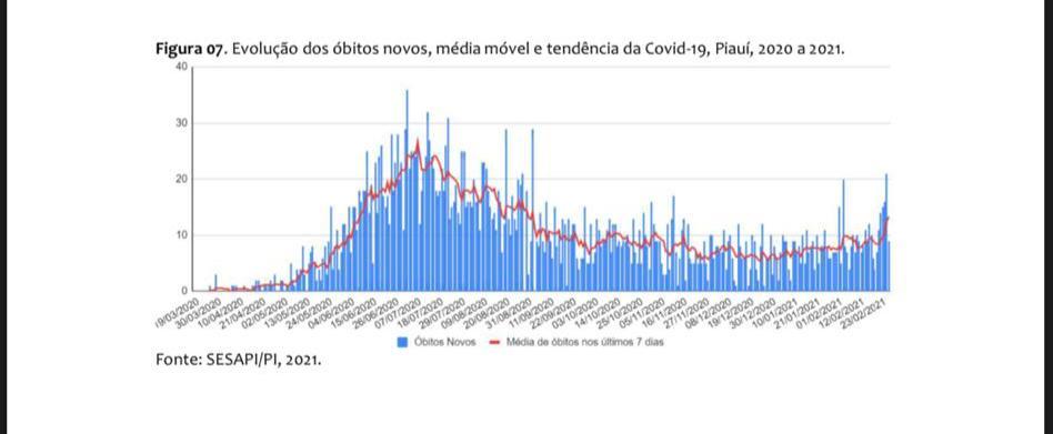Covid-19:Pesquisa estima colapso na saúde e 31 mortes diárias no Piauí - Imagem 1