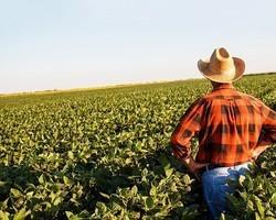 Crédito rural: contratação no Plano Safra 20/21 cresce no país