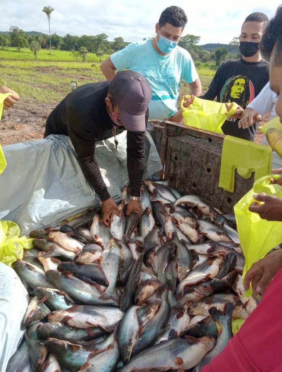 Distribuição do tradicional peixe da semana Santa para a população de Curralinhos - Foto: Divulgação/Ascom