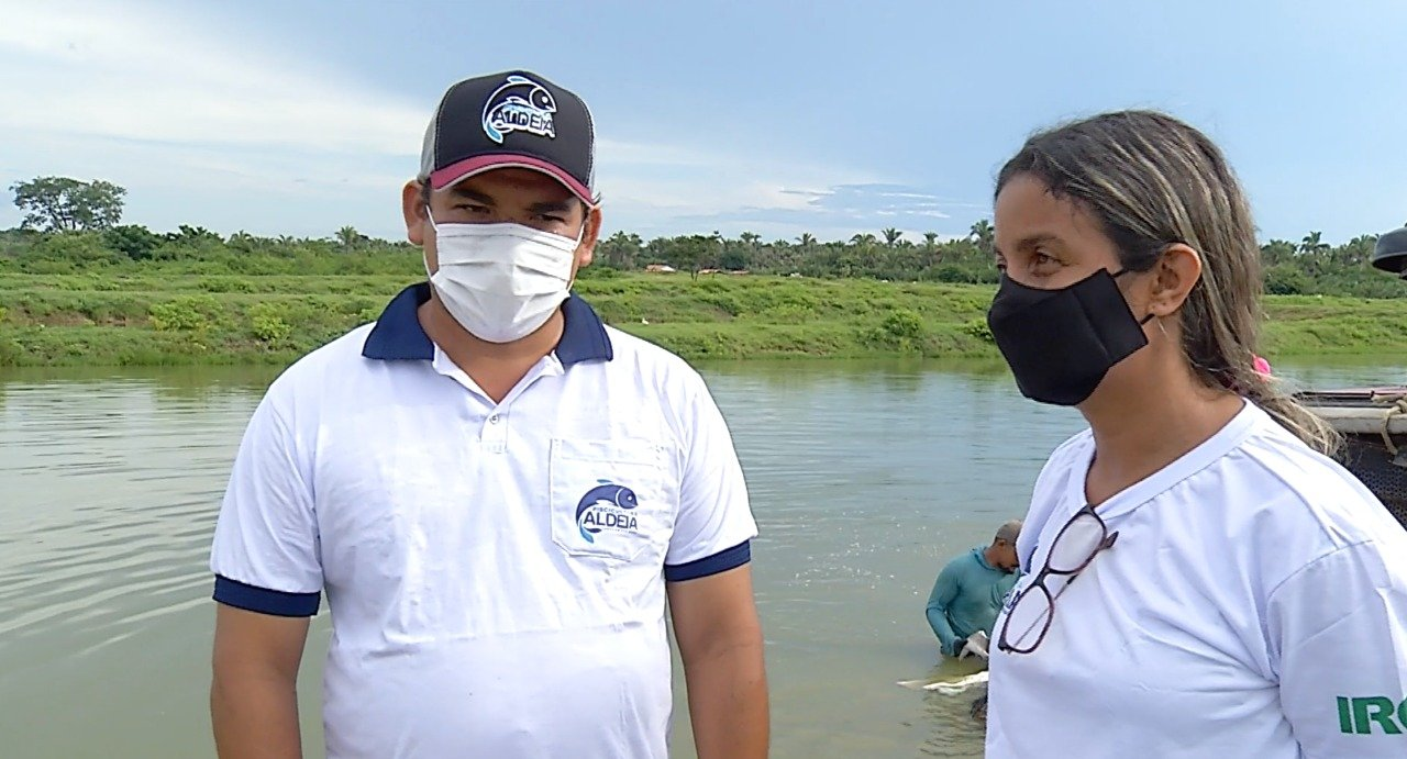 Produção de peixe no Piauí é a maior do Nordeste - Imagem 2