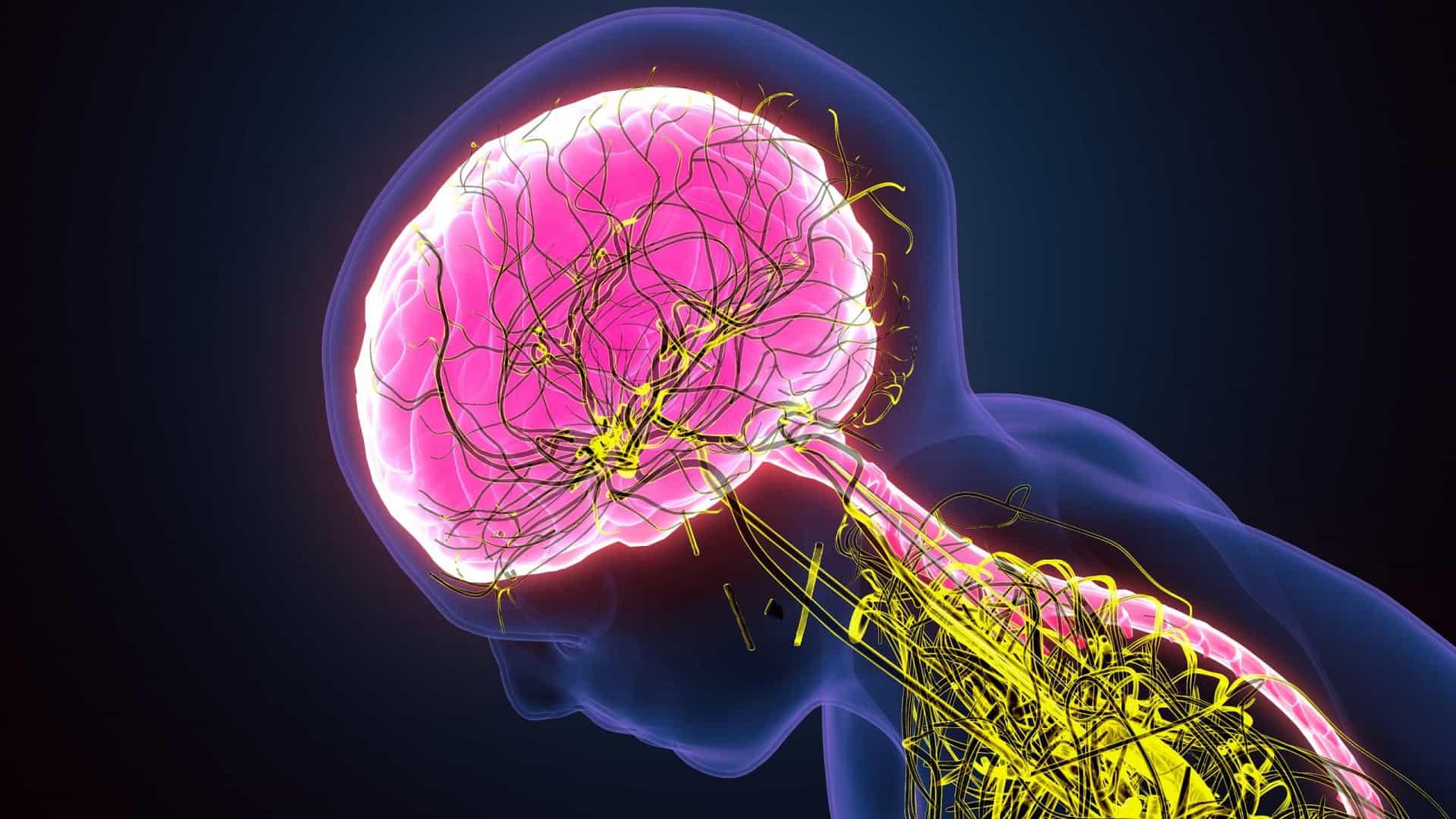 Covid-19 causa distúrbios neurológicos (Foto: Reprodução)