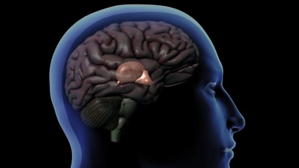 Desenho de um cérebro dentro do crânio humano mostrando a glândula pineal atrás do hipotálamo — Foto: Getty Images