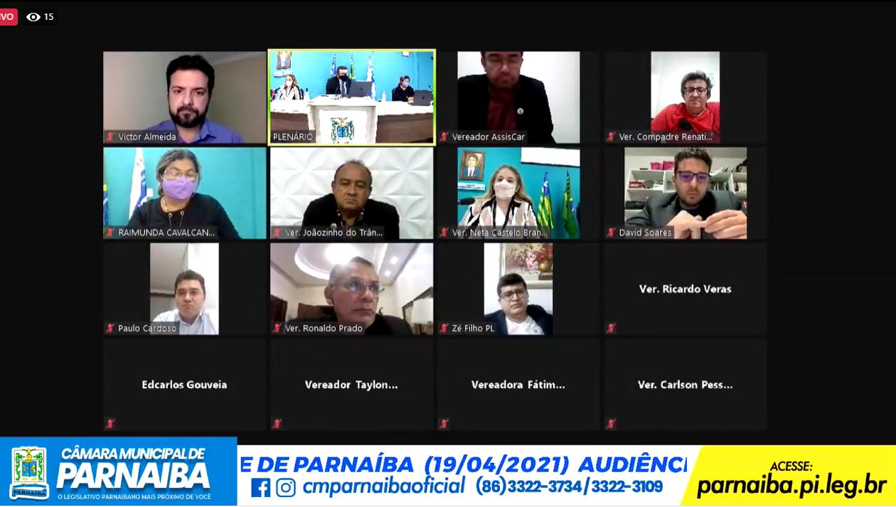 Plenário virtual discutiu ZPE em audiência pública