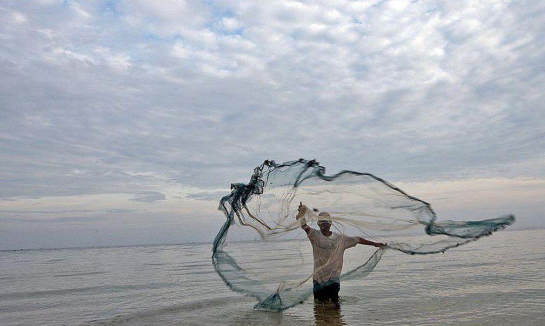 Maranhão ocupa destaque na piscicultura (ONU/Agência Brasil)