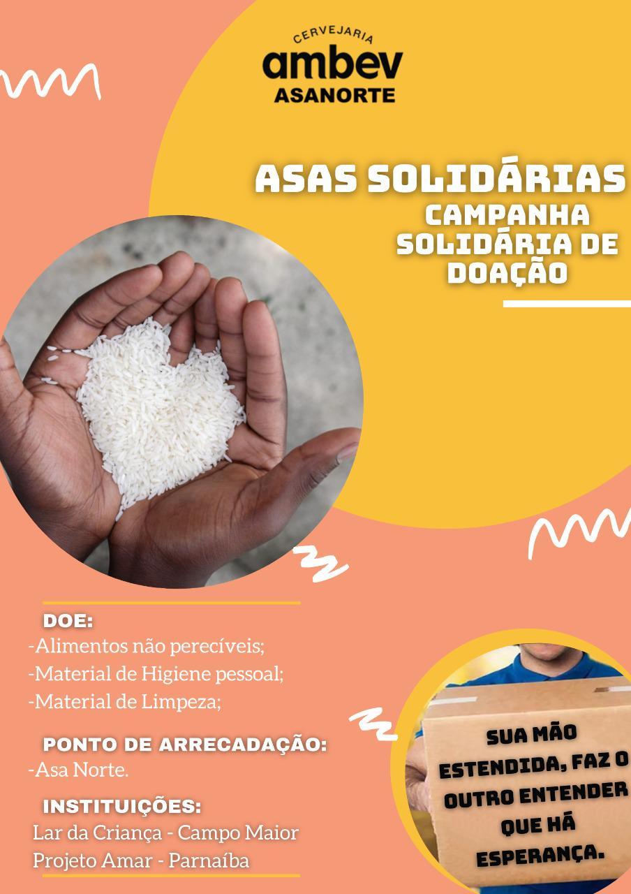 Asas Solidárias, uma campanha da Asa Norte Parnaíba e Campo Maior. Crédito: Divulgação.