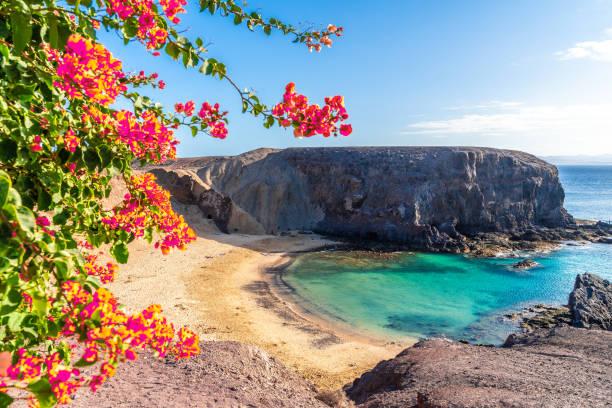Playa del Papagayo/Imagem: Divulgação/iStock