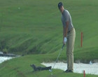 Jacaré invade campo de golfe e jogador fica concentrado