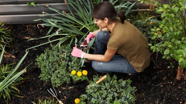 Cuidar do jardim e a saúde (Foto: divulgação)
