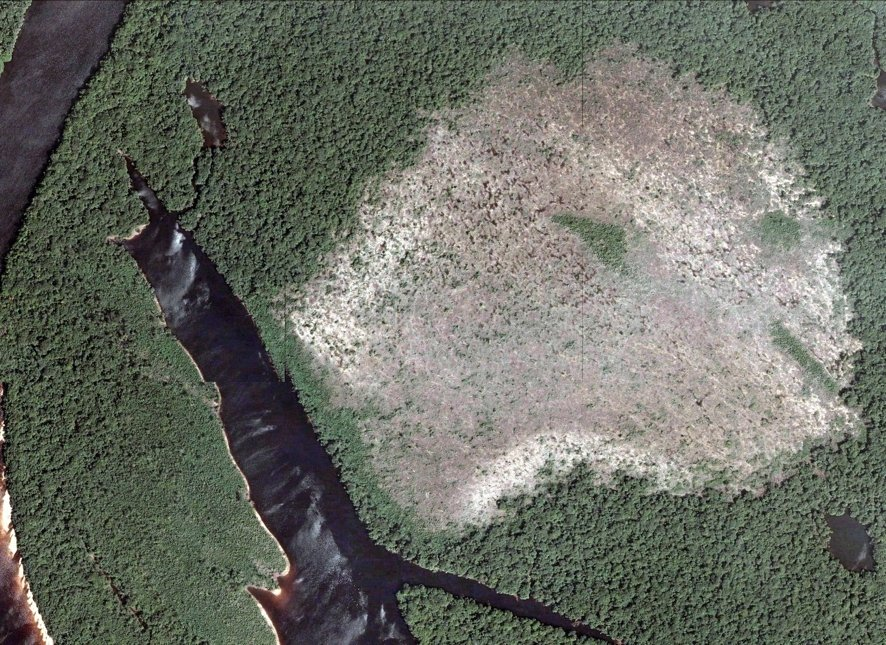 Savana se expandem/Google Earth