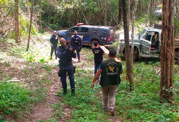 Operação flagra desmatamento e apreende madeira em Timon (Foto: Divulgação)