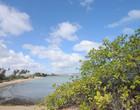 Covid-19: Cajueiro da Praia pode fechar acesso à cidade