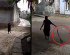 Vídeo assustador mostra idosa ganhado batalha contra cobra venenosa; veja