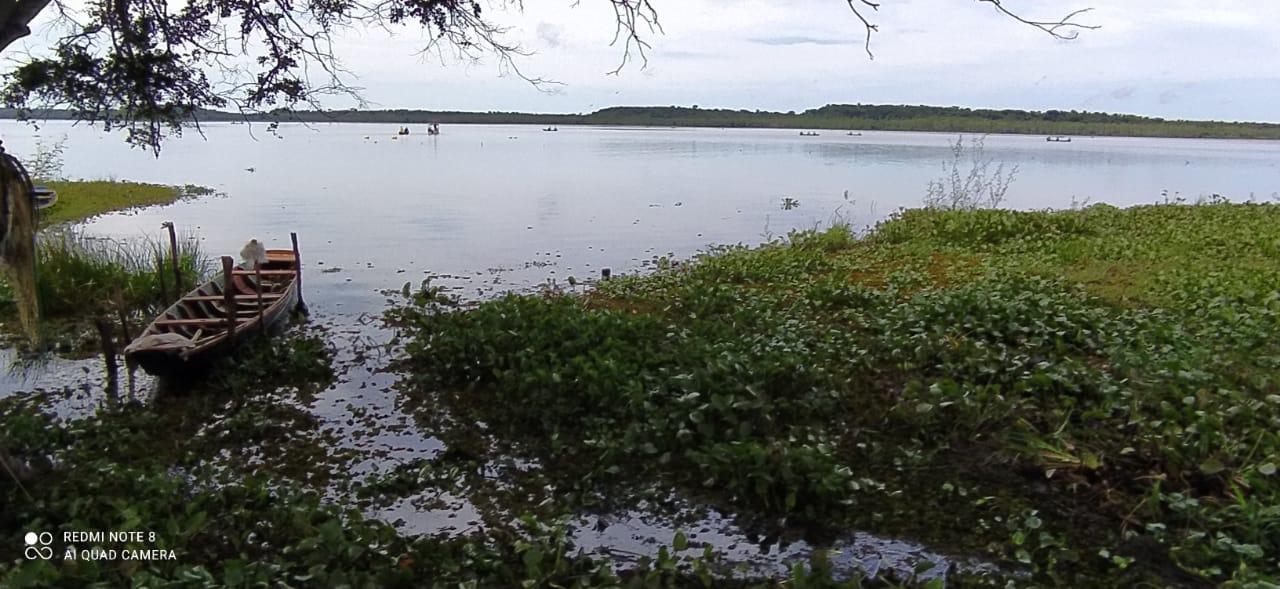 Lagoa em que o jovem desapareceu (Foto: Amarildo Gomes Fonseca/ Portal Meio Norte)