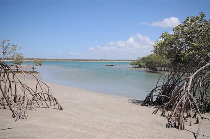 Município de Cajueiro da Praia (Foto: Reprodução/Internet)