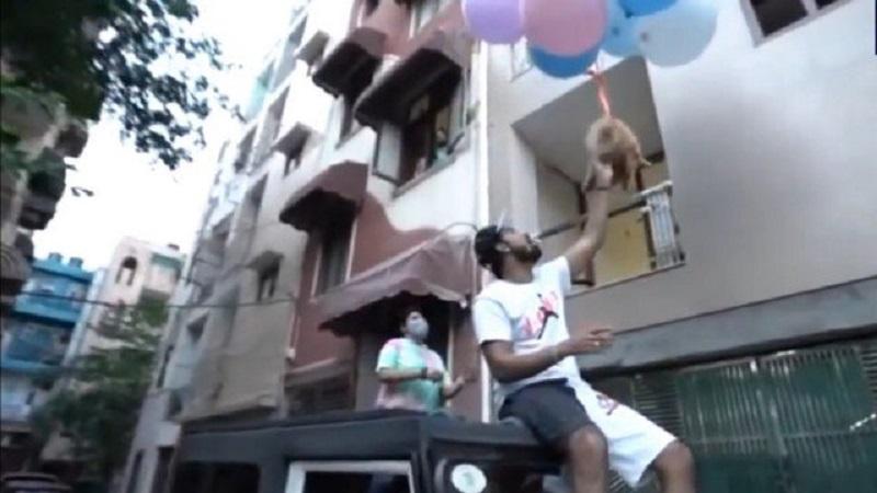Youtuber indiano foi preso após fazer seu cachorro voar - Foto: Redes Sociais