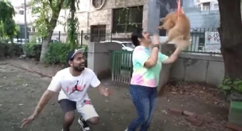 Youtuber indiano foi preso após fazer brincadeia com animal- Foto: Redes Sociais