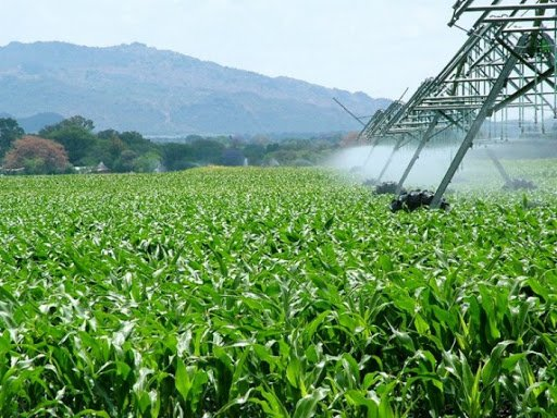 Terras estão mais caras com a expansão do agro no Brasil - Imagem 1