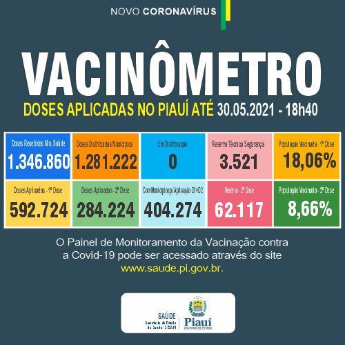 Piauí registra 598 casos e 11 óbitos por Covid em 24 horas, aponta Sesapi - Imagem 2
