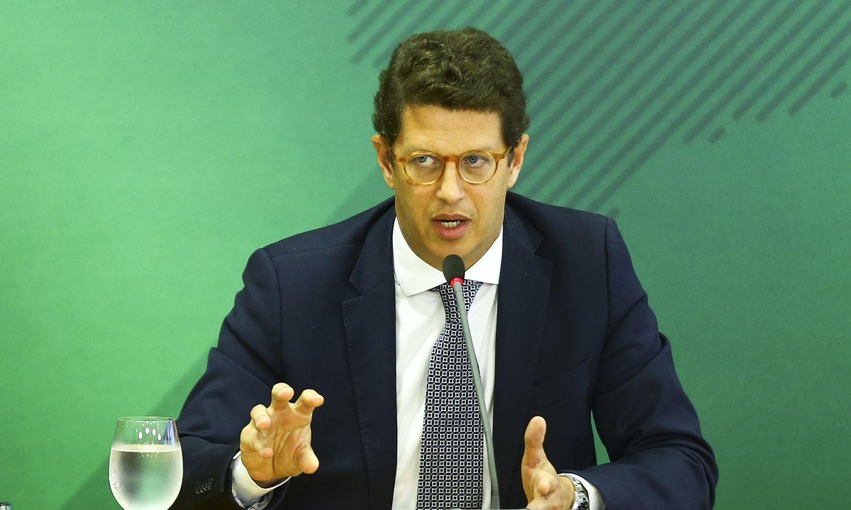 Ricardo Salles é alvo de investigação na Polícia Federal (Foto: Marcelo Camargo)