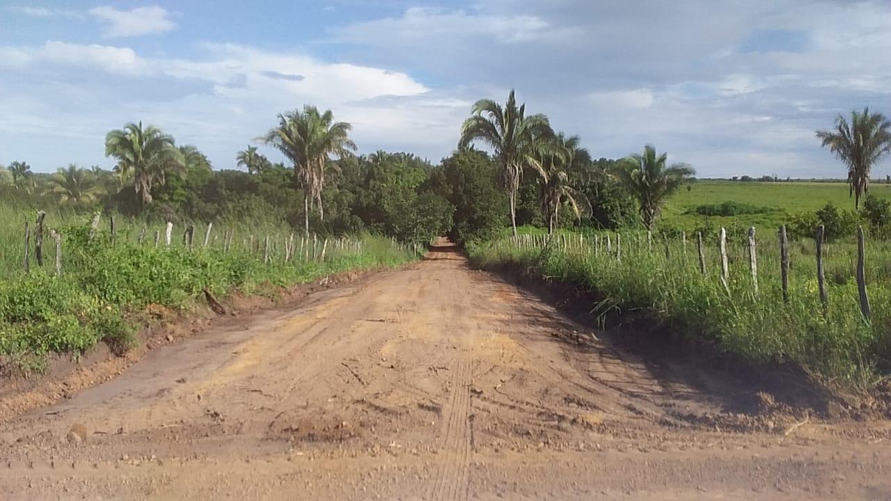PML está fazendo recuperação de estrada vicinais do Município - Imagem 2