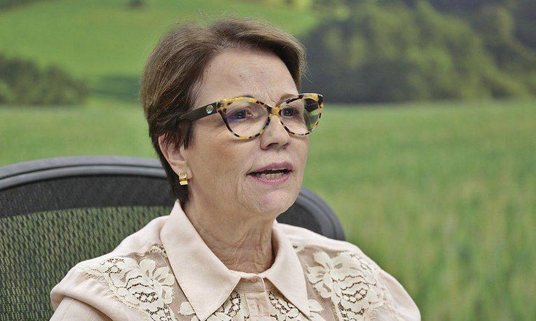 A ministra da Agricultura, Teresa Cristina-