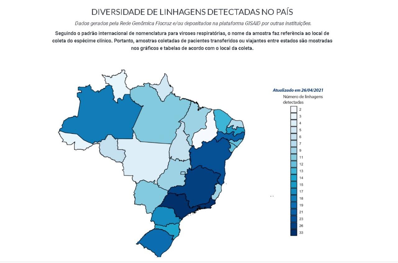 Piauí é o estado do Brasil com menos linhagens detectadas   FOTO: Reprodução