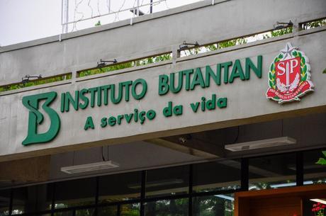 Essa remessa é parte das cinco milhões de doses previstas para serem liberadas - Foto: Divulgação