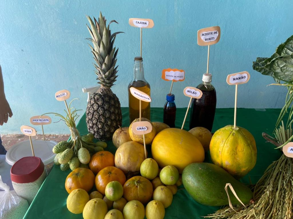 """Exposição da """"Mesa da Agricultura Familiar"""" em Manoel Emídio - Imagem 8"""