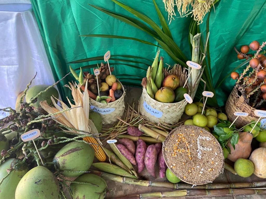 """Exposição da """"Mesa da Agricultura Familiar"""" em Manoel Emídio - Imagem 6"""