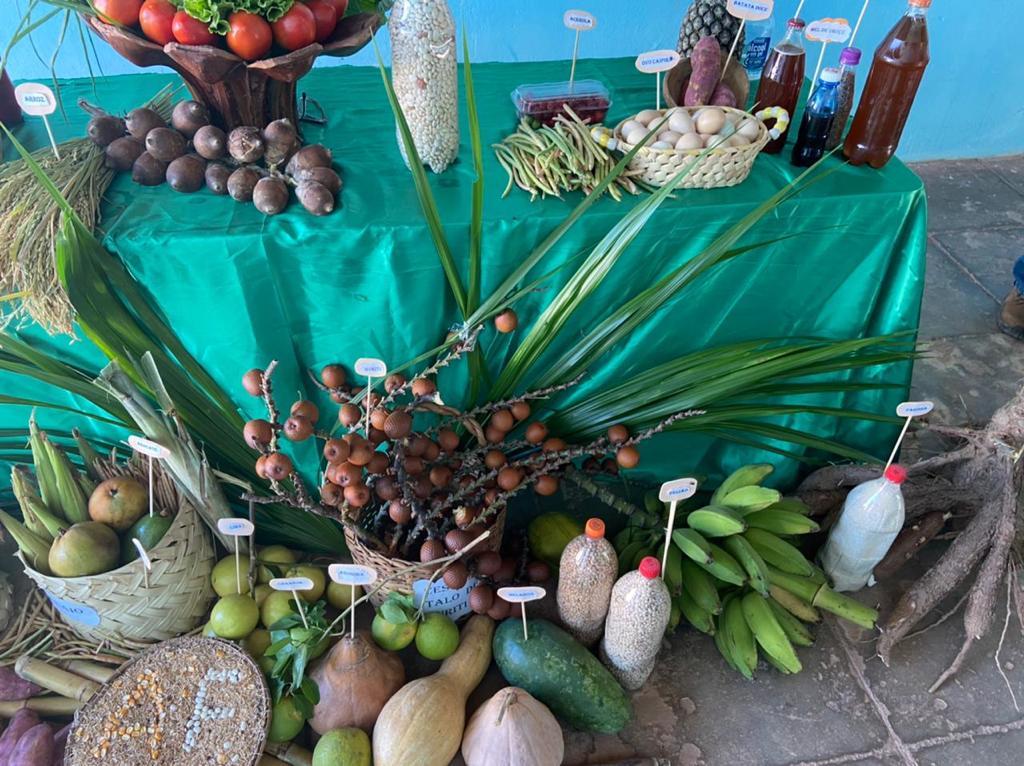 """Exposição da """"Mesa da Agricultura Familiar"""" em Manoel Emídio - Imagem 5"""
