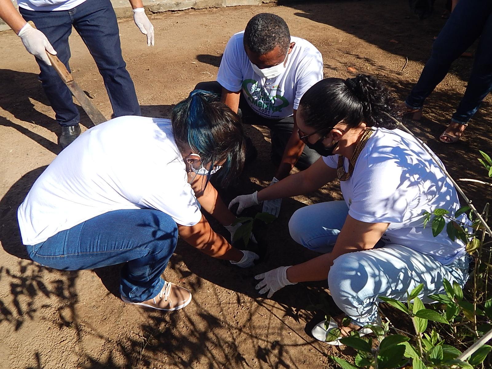 Dia Mundial do Meio Ambiente é lembrado em Agricolândia em Escolas  - Imagem 1