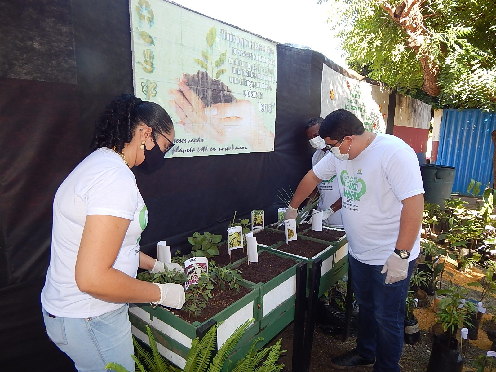 Dia Mundial do Meio Ambiente é lembrado em Agricolândia em Escolas  - Imagem 11