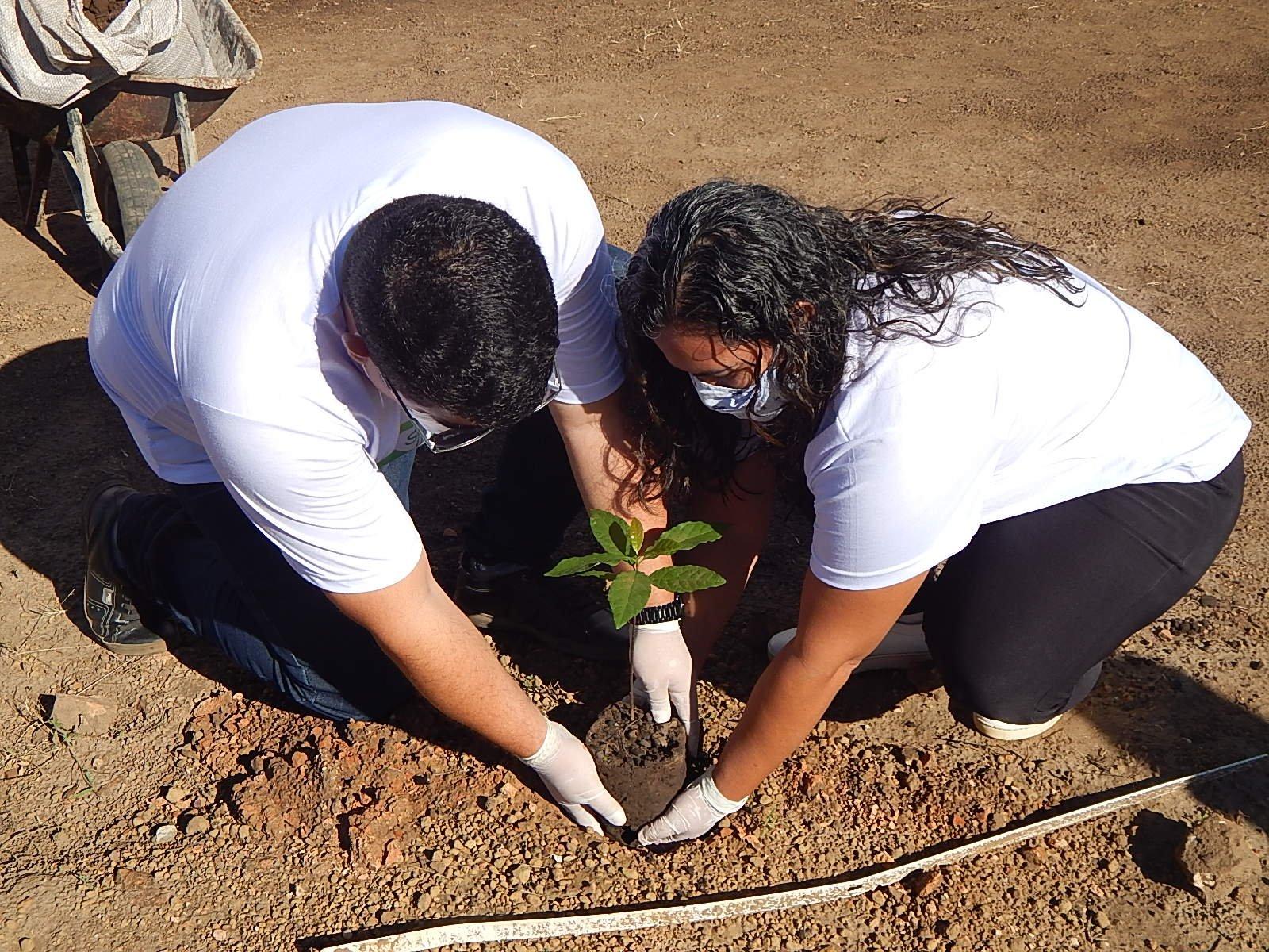 Dia Mundial do Meio Ambiente é lembrado em Agricolândia em Escolas  - Imagem 2