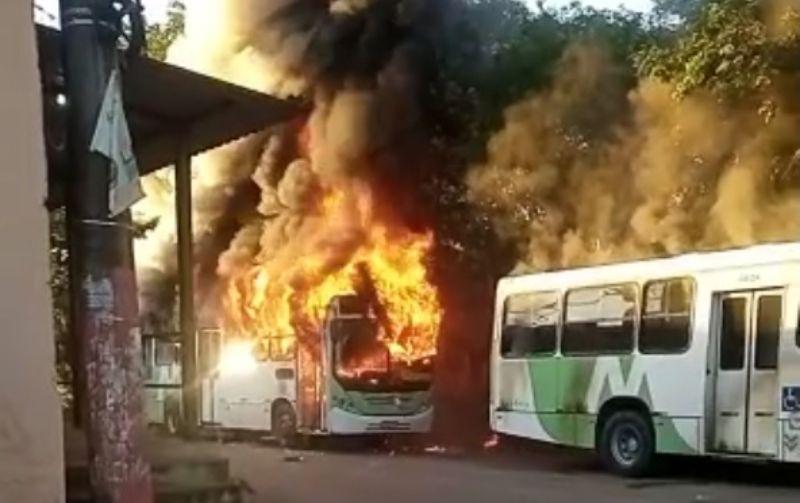 Foto: Reprodução/Portal Manaus Alerta