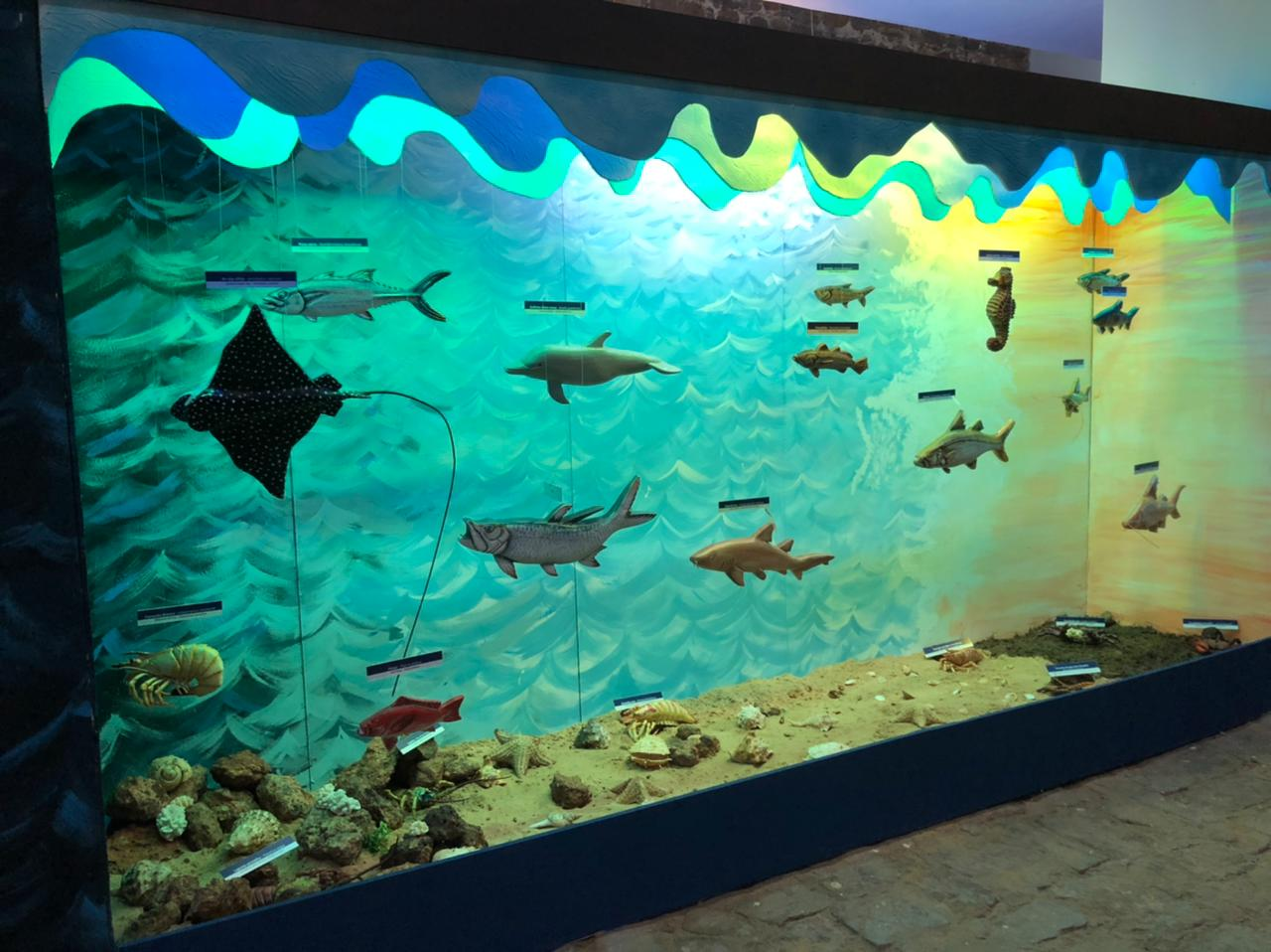 Museu do Mar será entregue nesta sexta (Foto: João Albert)