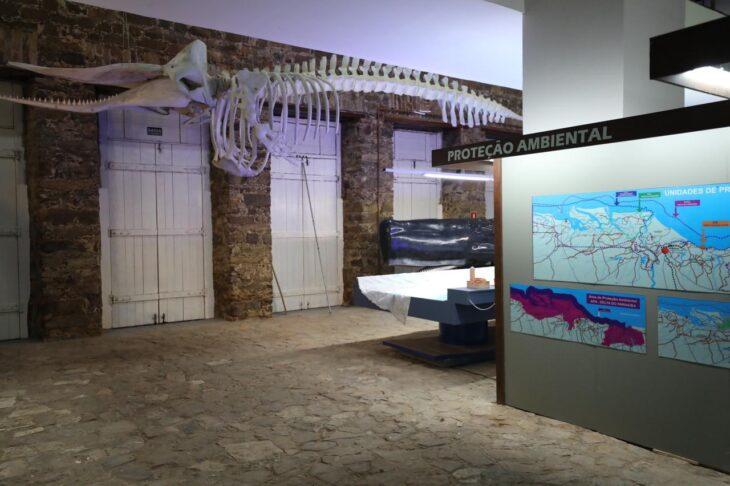 Interior do Museu do Mar (Divulgação)