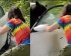Em busca de comida, urso arromba carro e destrói estofamento; vídeo