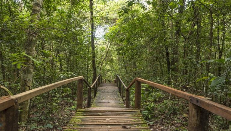 Preferência por turismo de natureza (Divulgação)
