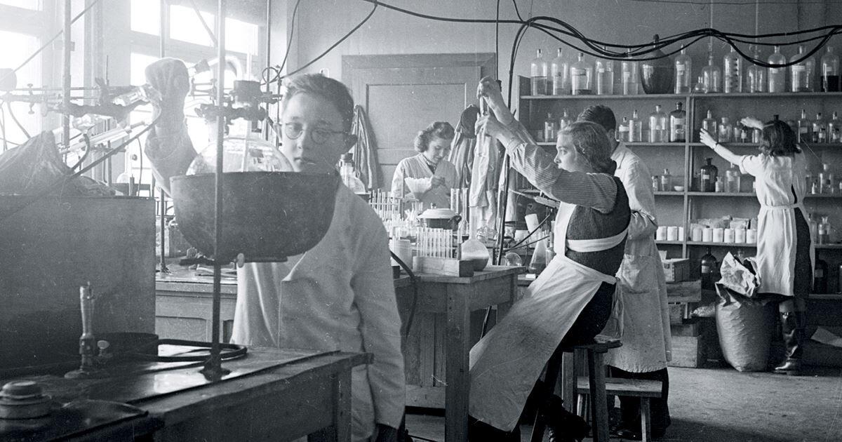 Há 100 anos foi descoberta a insulina, evolução no controle do diabetes - Imagem 2